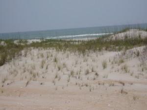 Dune1 (1)